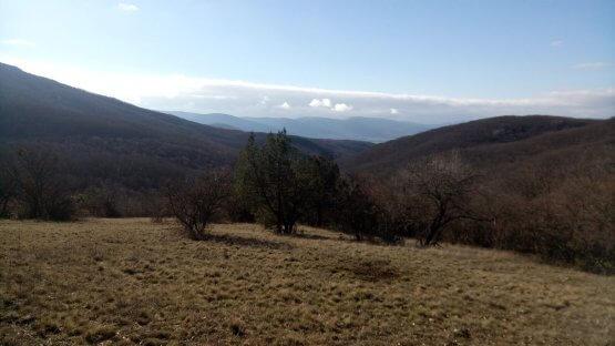 Поляна с видом на Байдарскую долину